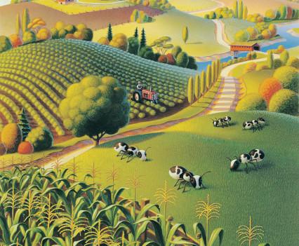 robin-moline-ant-farm
