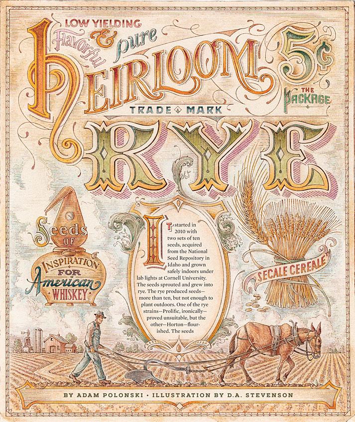 Dave Stevenson illustration of Heirloom Rye - 2019
