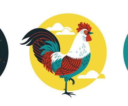 lucie-rice-birds